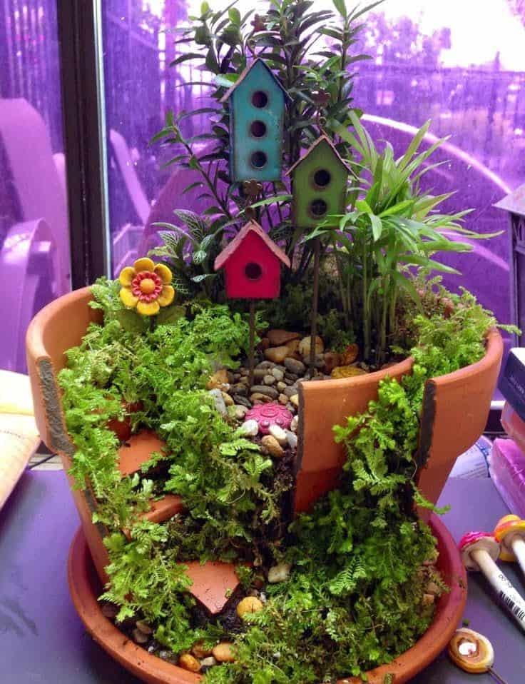 broken-planter-mini-garden