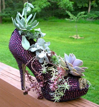 upcycled-shoe-planter