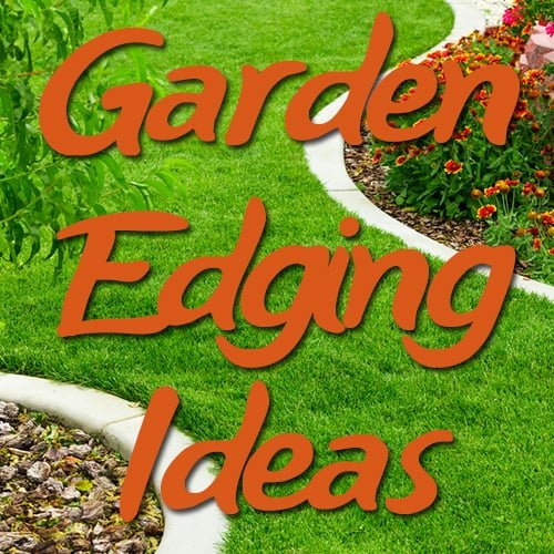 cheap garden edging ideas featured