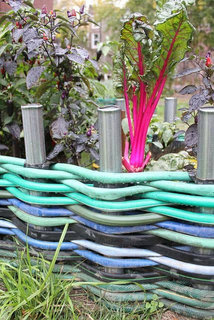 garden hose edging ideas