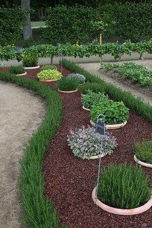 herb garden edging ideas