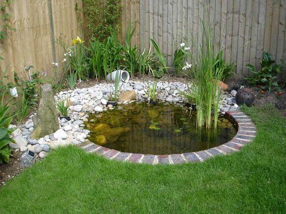 pond edging