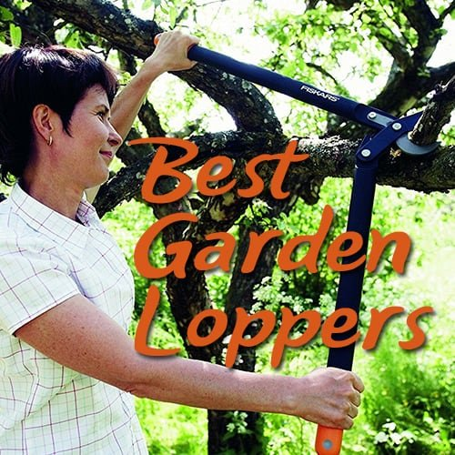 Best Image Of Garden Woodimages Co: 5 Best Loppers That Make Short Work Of Tough Branches