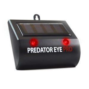 predator eye pro
