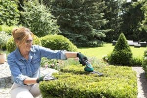 Bosch Isio Cordless Shrub and Grass Shear Set hedge