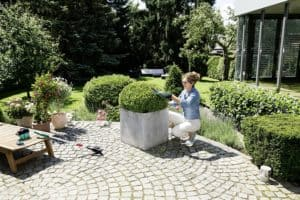 Bosch Isio Cordless Shrub and Grass Shear Set planter