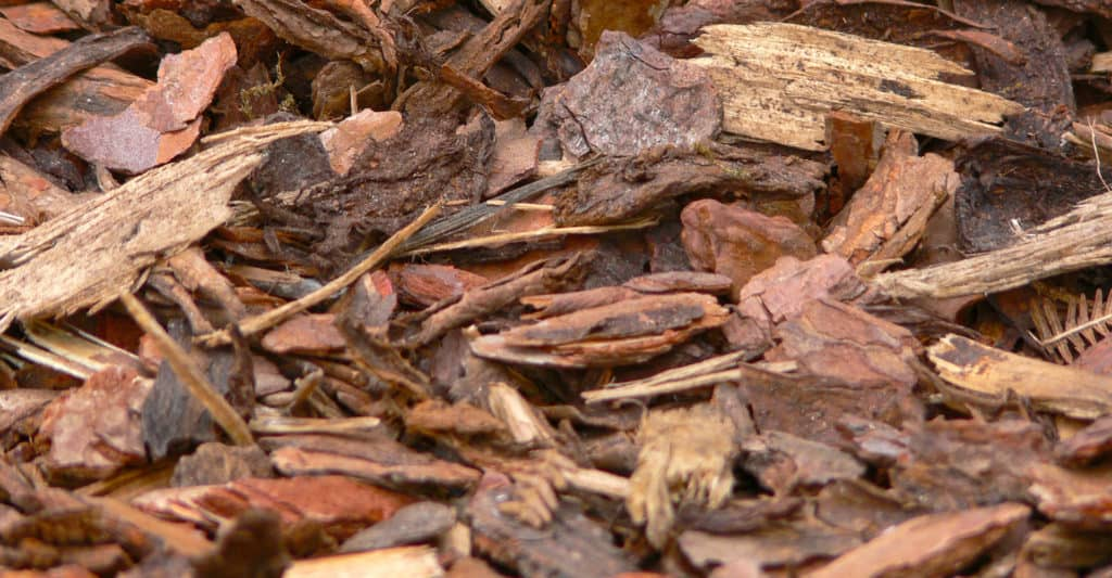 bark-mulch