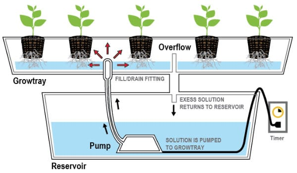 Ebb and Flow Flood and Drain Systems