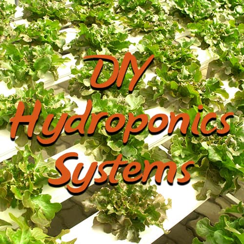 how to make your own hydroponic system