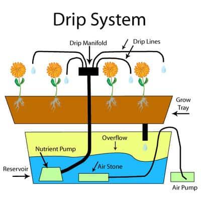 hydroponics drip system
