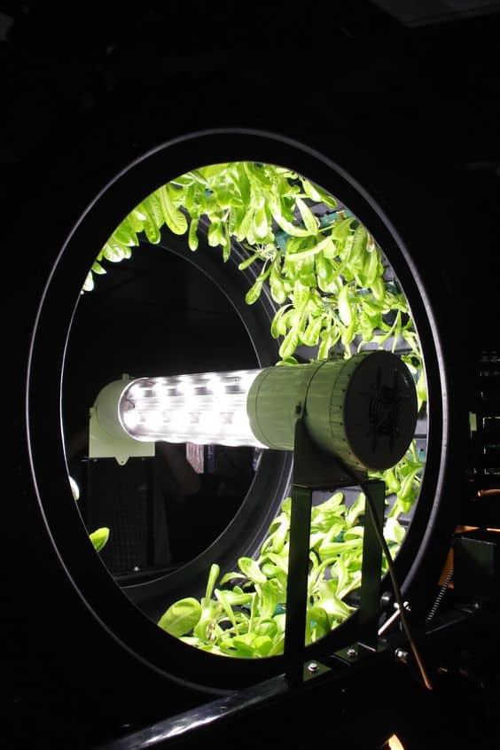 rotary hydroponics