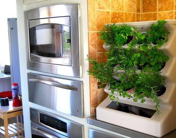 vertical countertop garden hydroponics