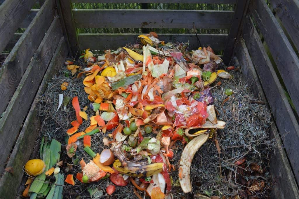 what can i compost