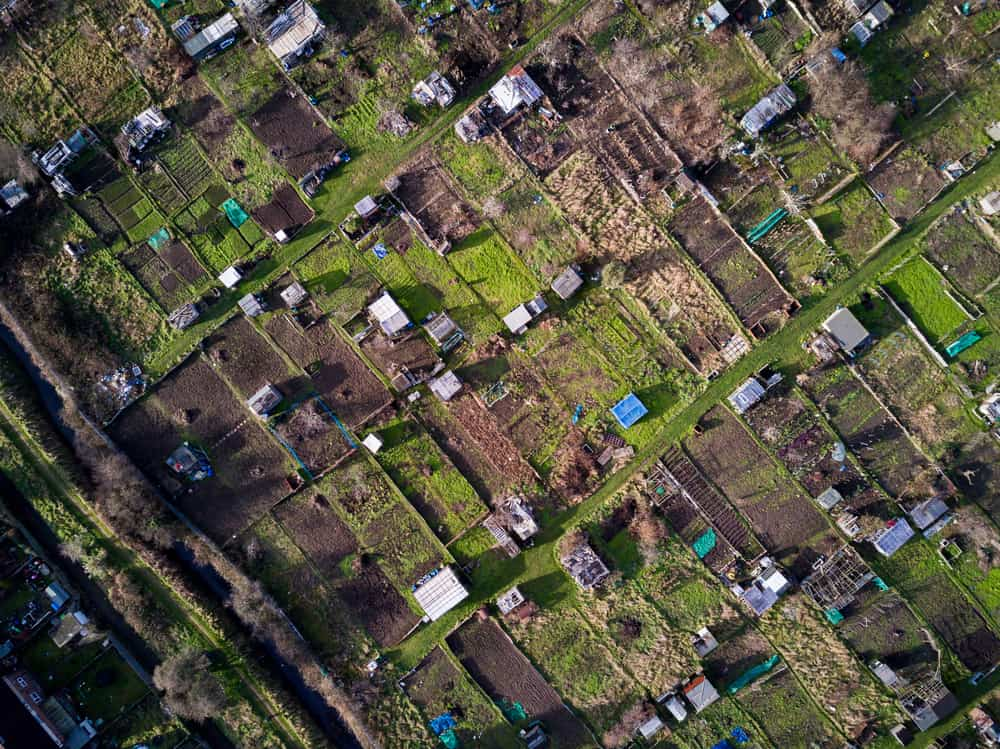 allotment birdseye view