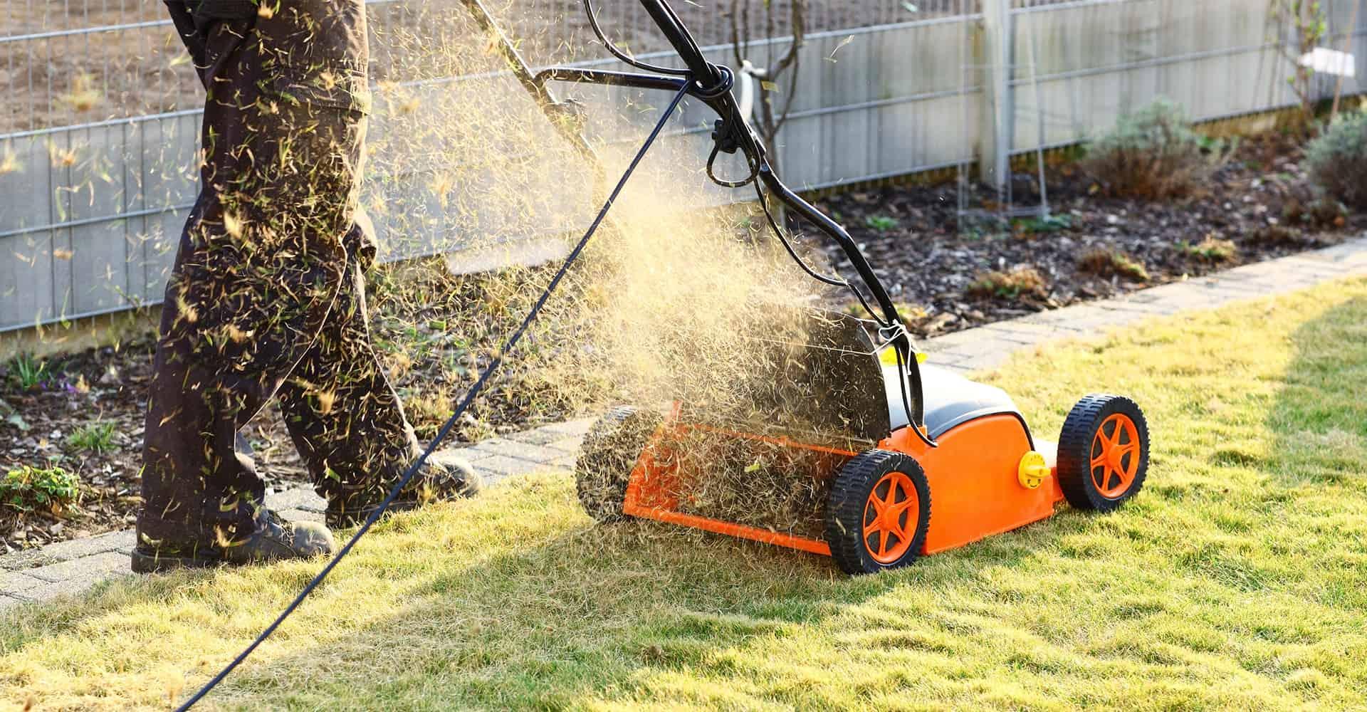 best-lawn-scarifier