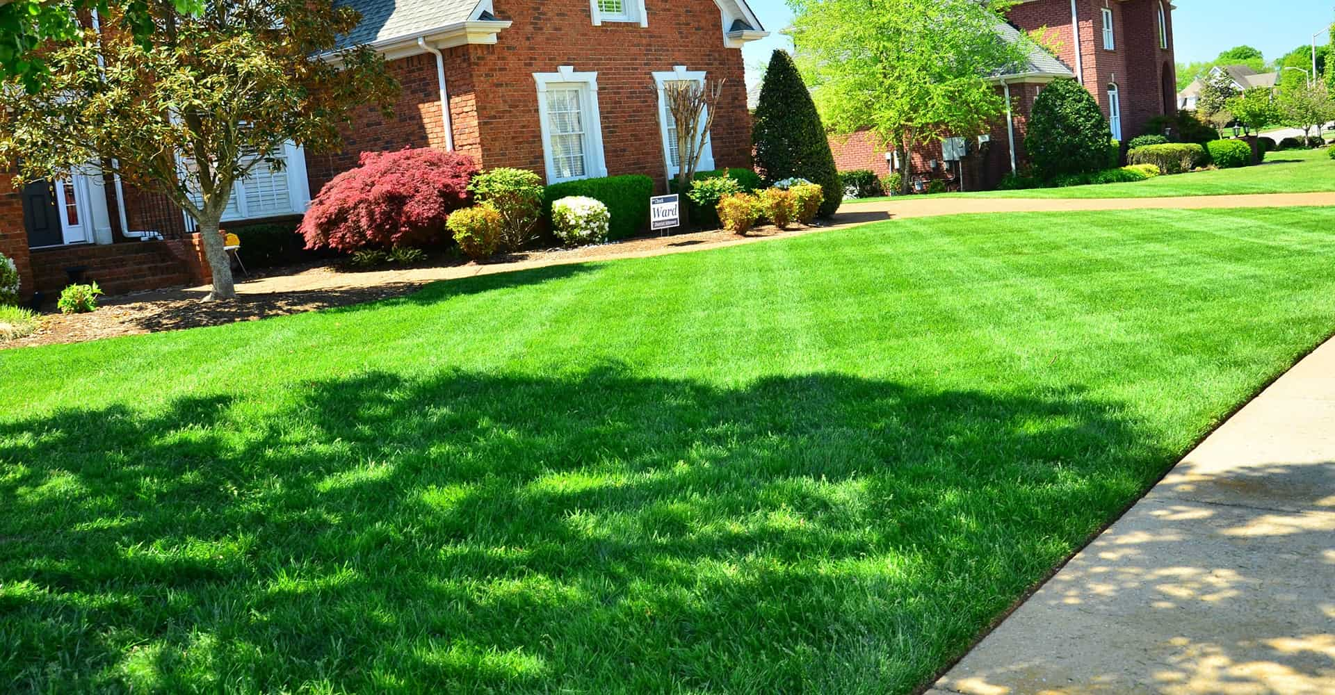 lawn-edger-2
