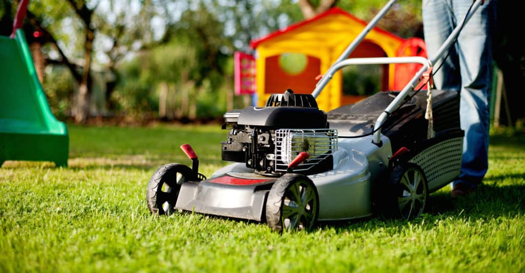 best-petrol-lawn-mower