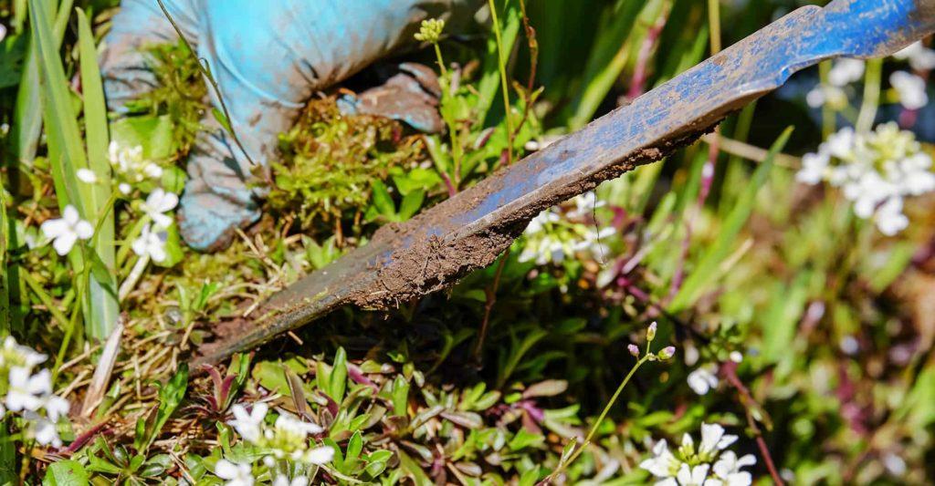 weeding-tool