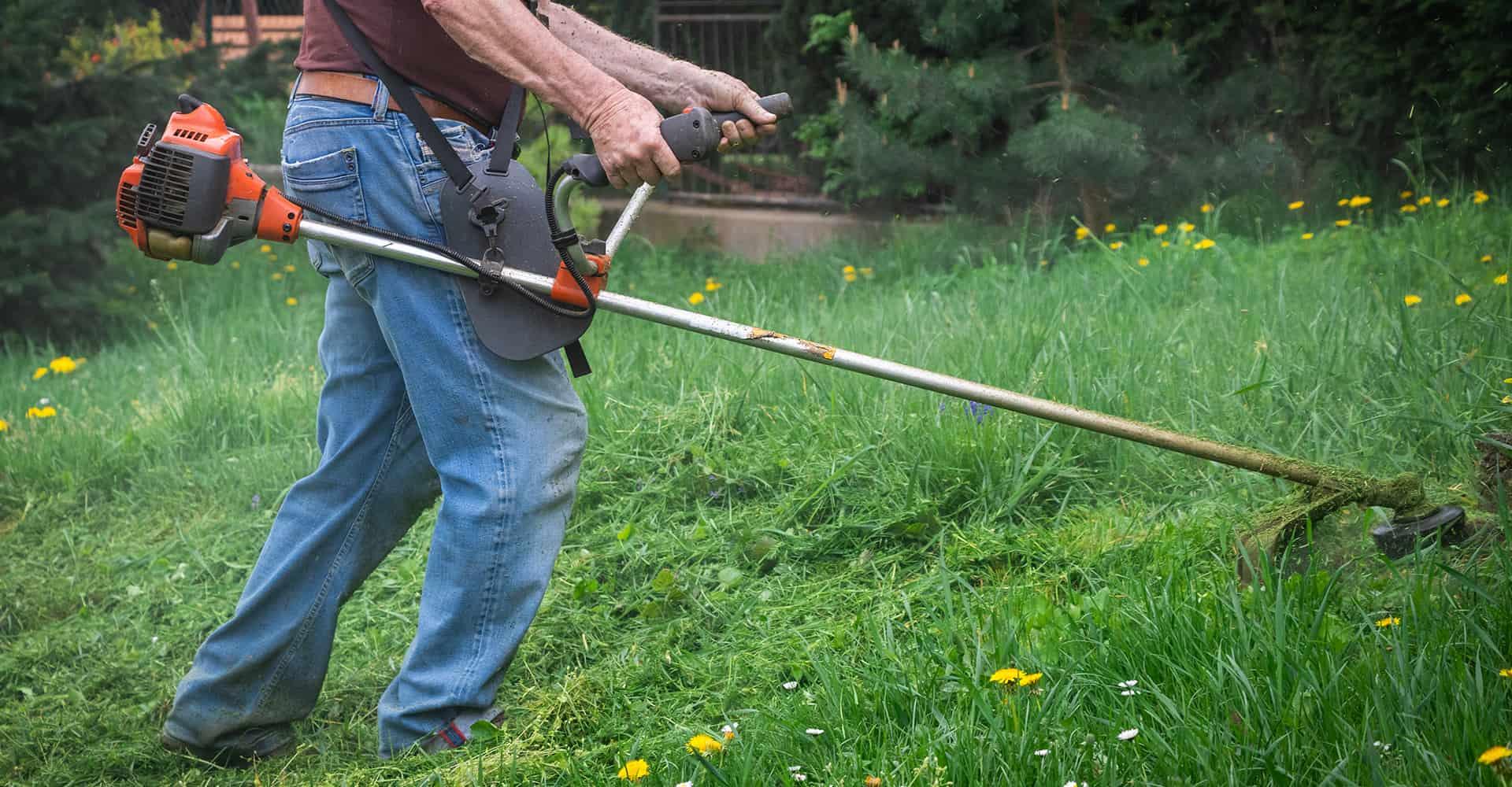 5 Best Brush Cutters For Brambles 2020 Edition | DIY Garden