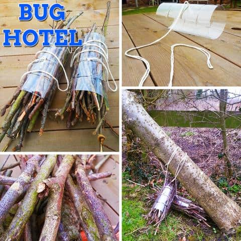 plastic bottle bug hotel