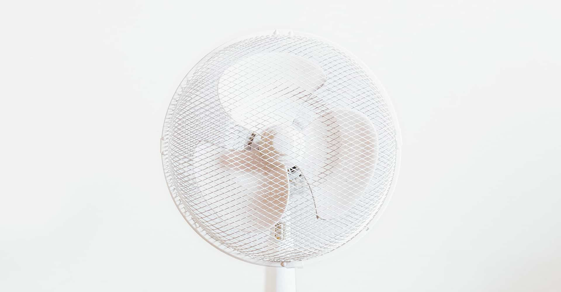 best-quiet-fan