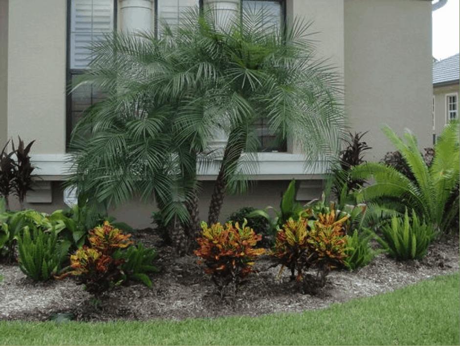 front garden 20