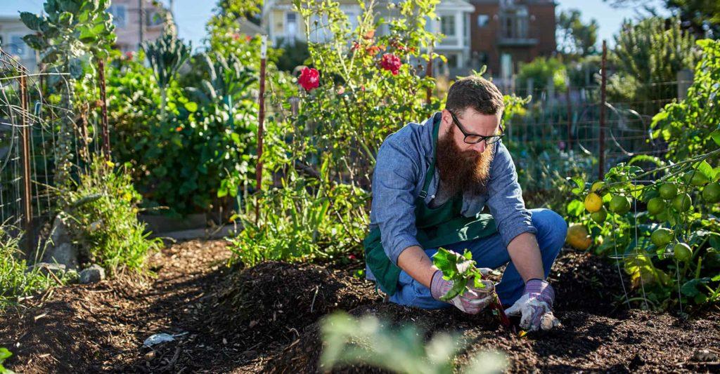 gardening-trousers