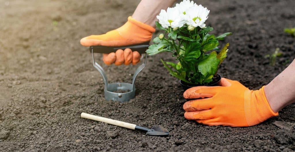 best-bulb-planter-tools