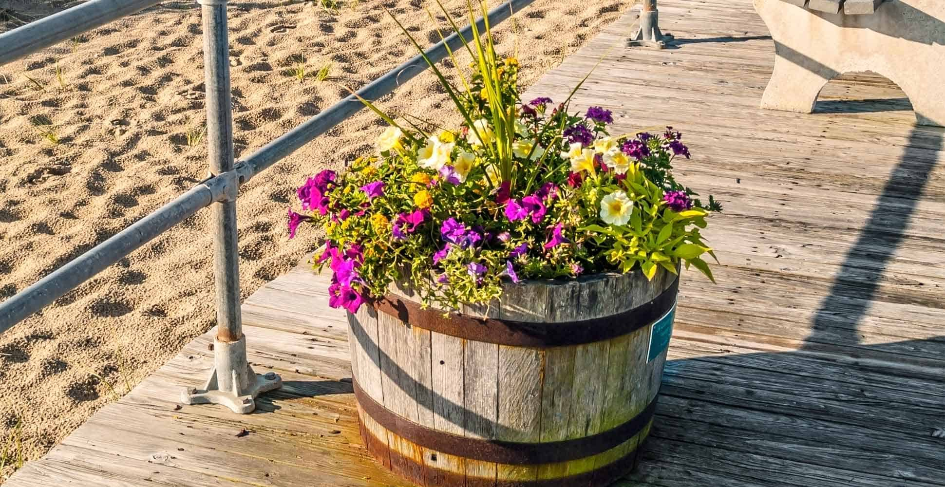 best-half-barrel-planters