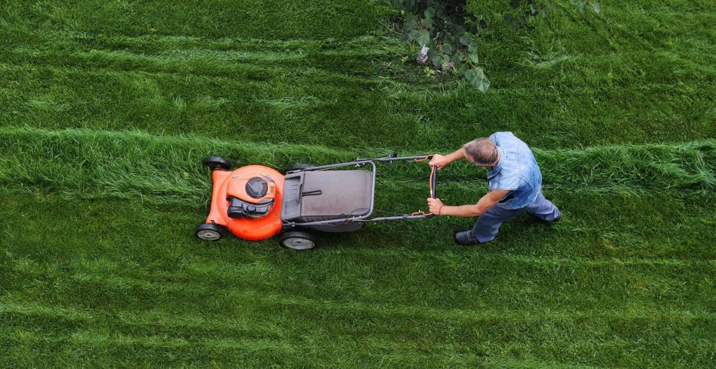best-professional-lawn-mowers