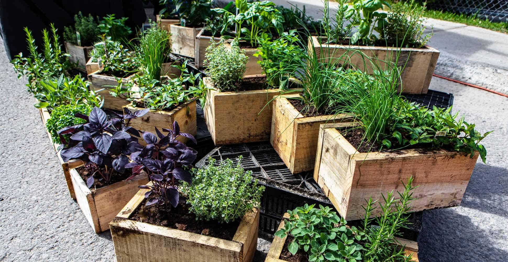 best-wooden-planters