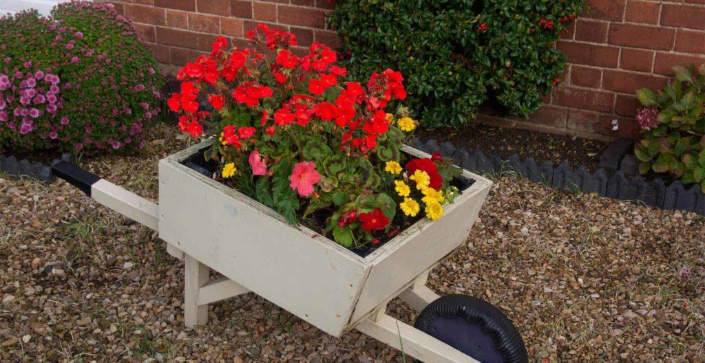 best-wheelbarrow-planters