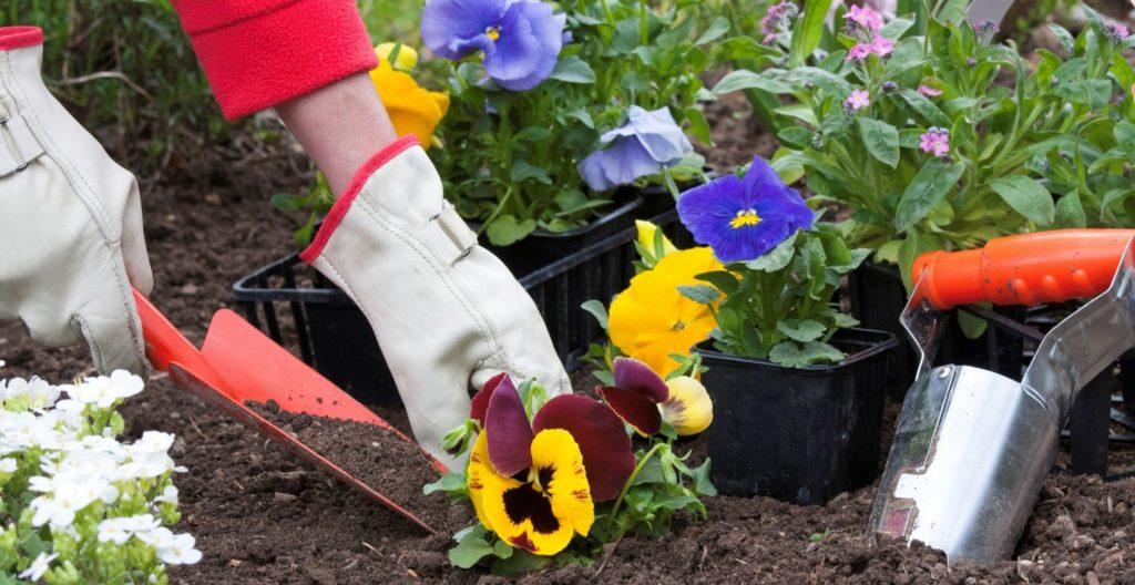 best-garden-hand-trowel