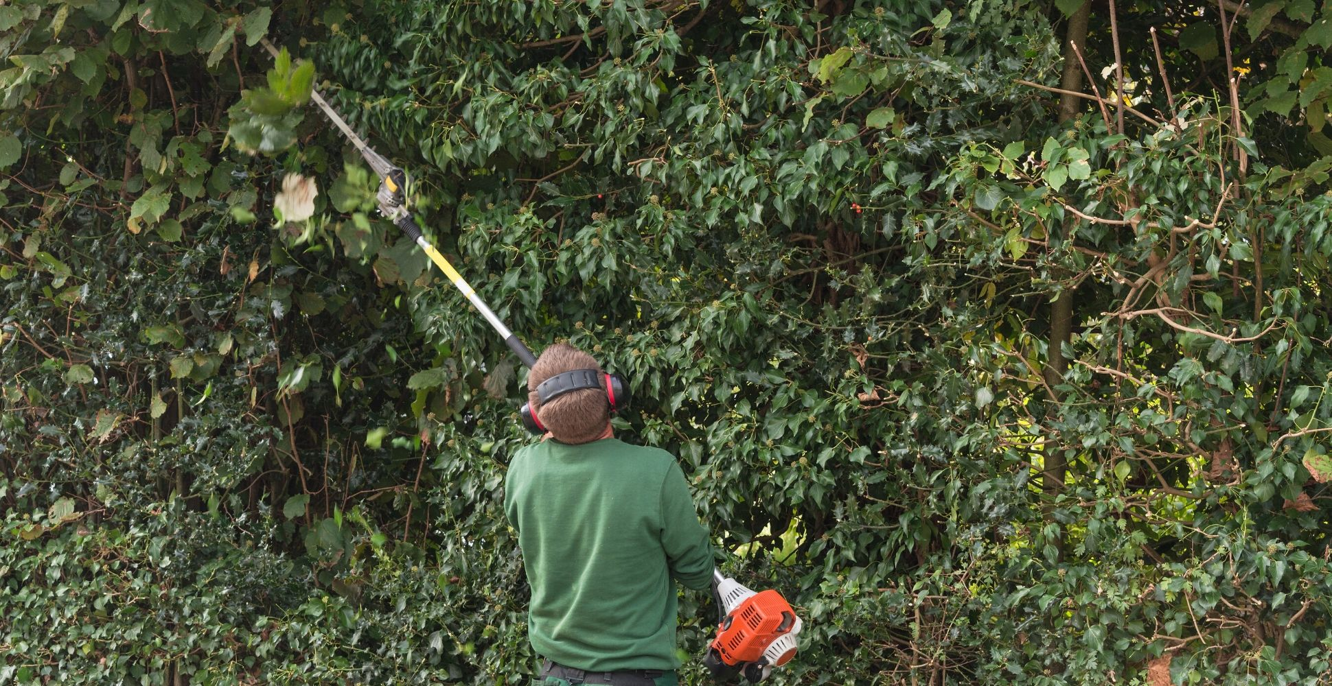 best-long-reach-hedge-trimmer