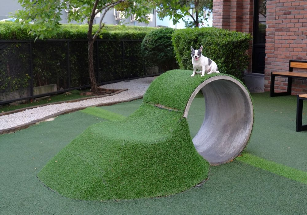 artificial-grass-benefit-safe-for-pets