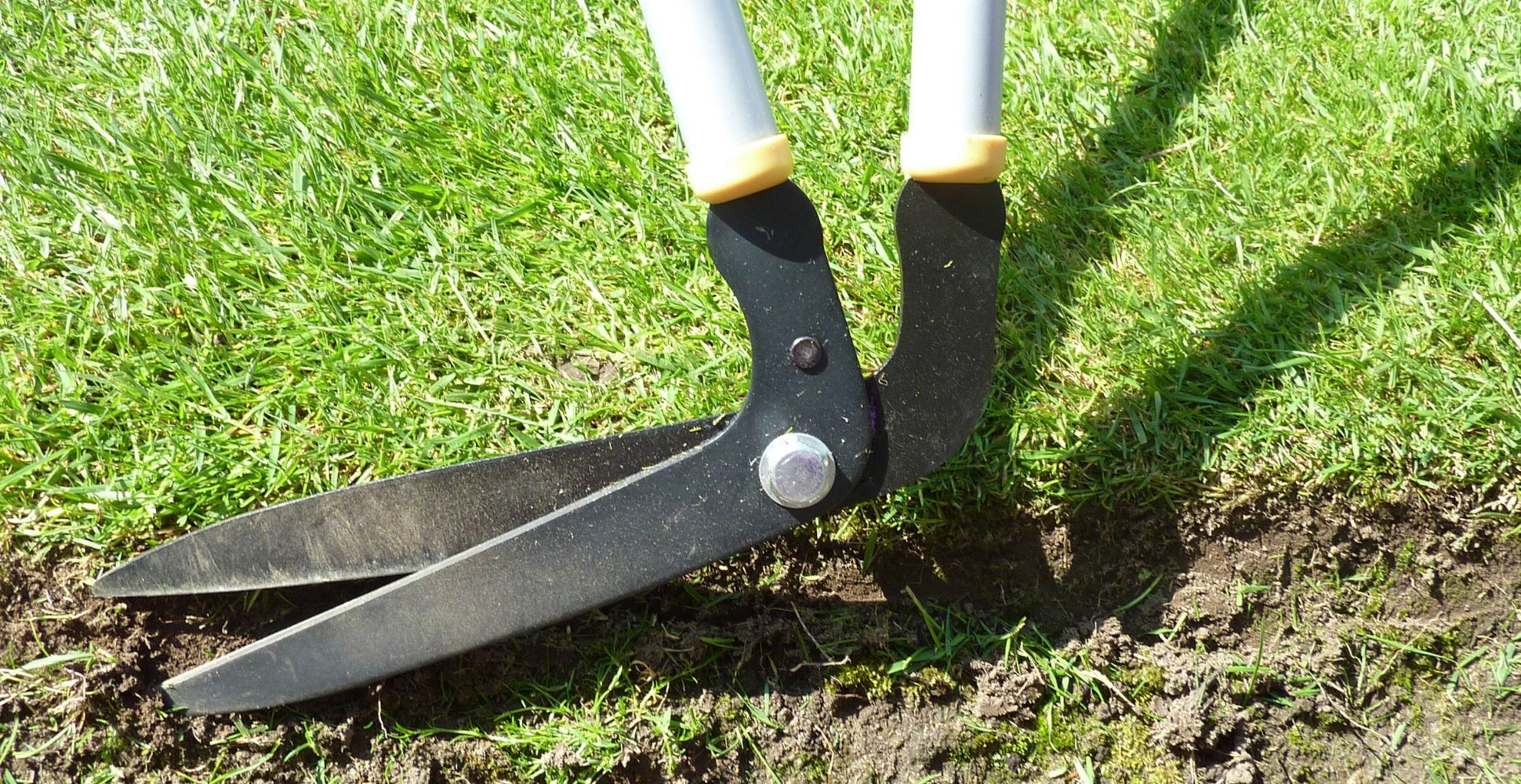 best-lawn-edging-shears