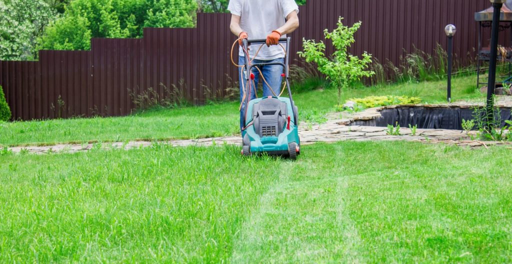 best-roller-lawn-mower