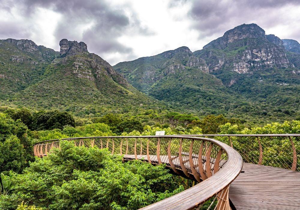 kirstenbosch-national-botanical-garden-cape-town-south-africa