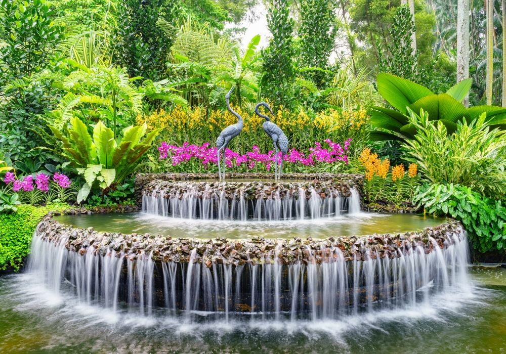 national-orchid-garden-singapore-botanical-gardens