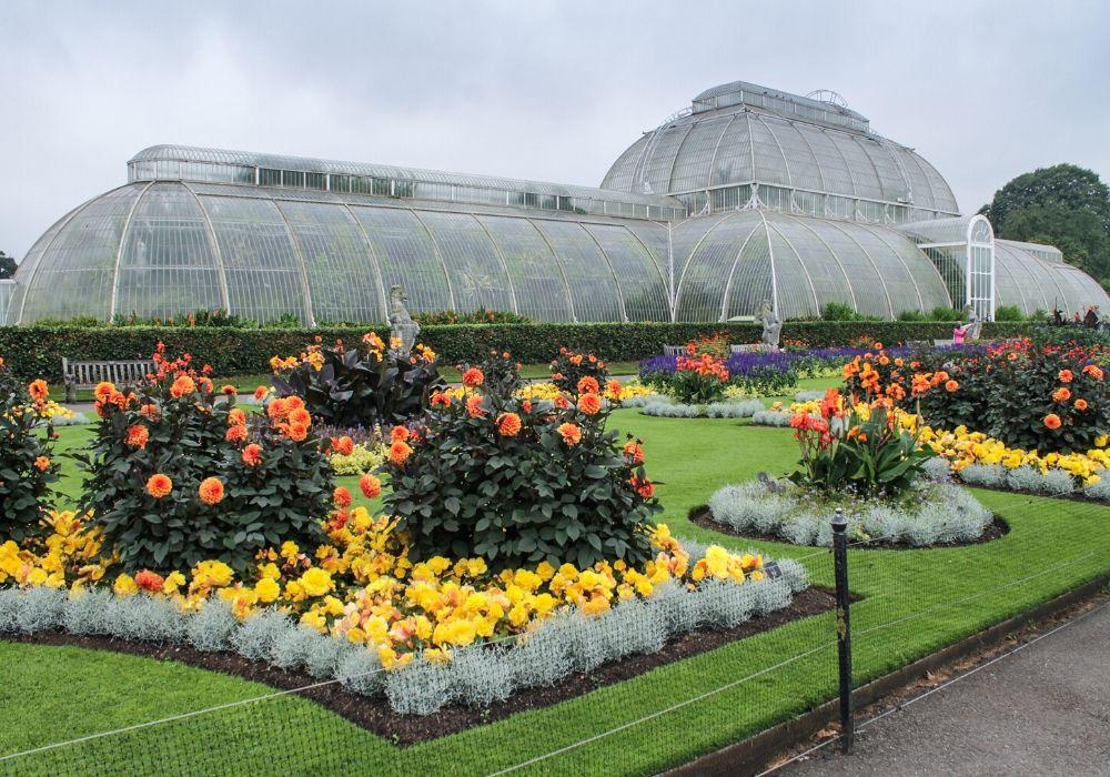 the-palm-house-kew-gardens-london