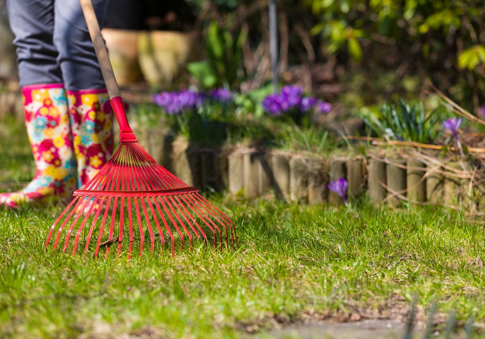 cleaning-the-lawn