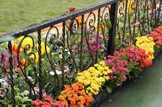 12. Low Garden Fence