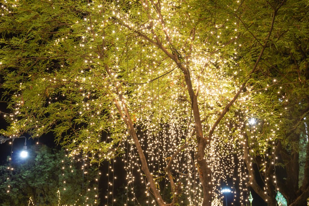 19. Garden Tree Lighting