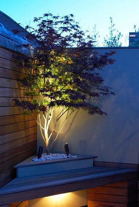 23. Garden LED Lighting
