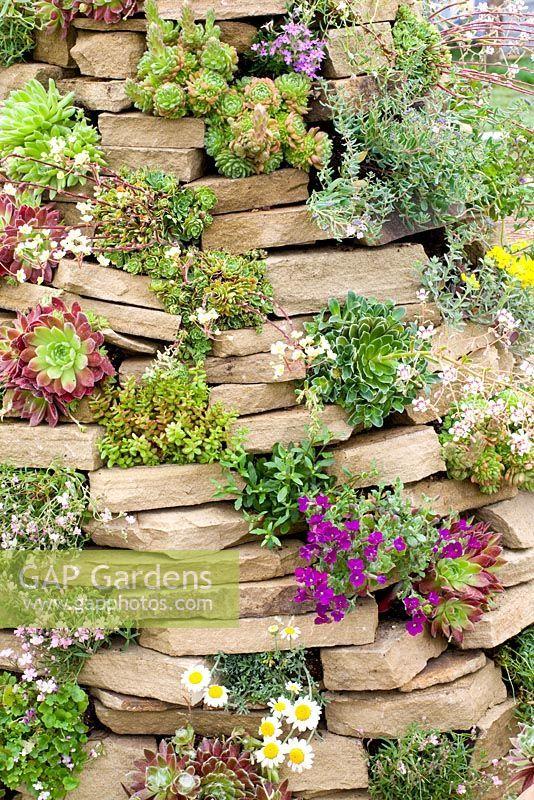 31. Rock Wall Garden