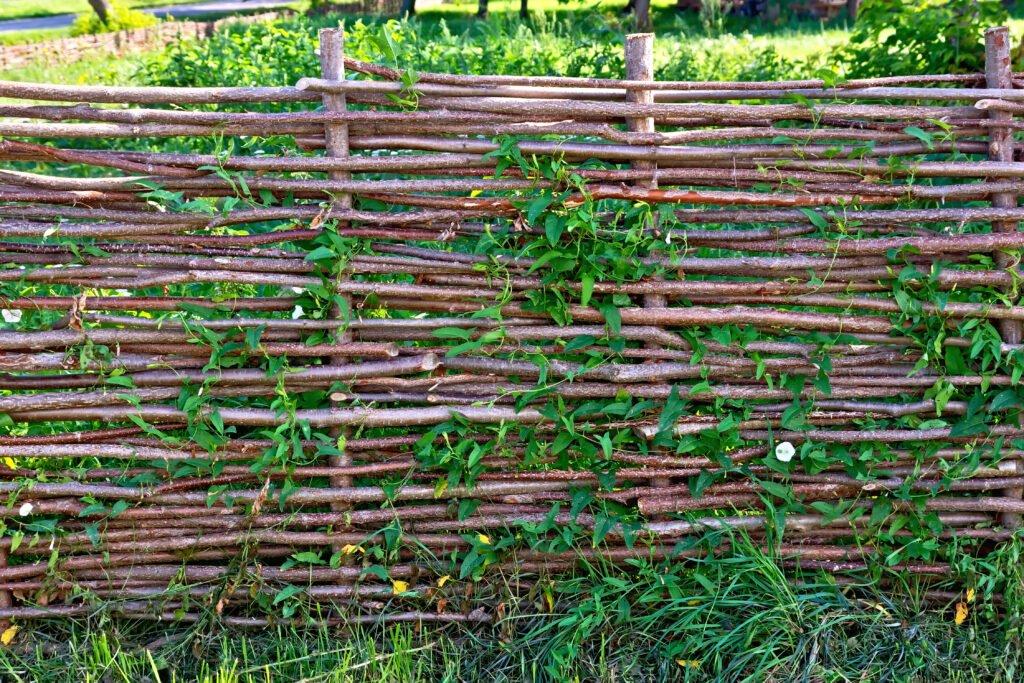 9. Cheap Garden Fence