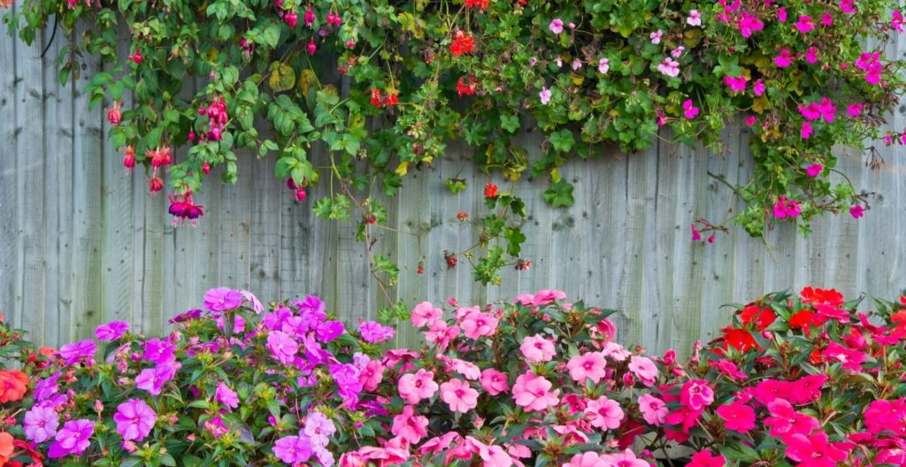 garden-fence-ideas