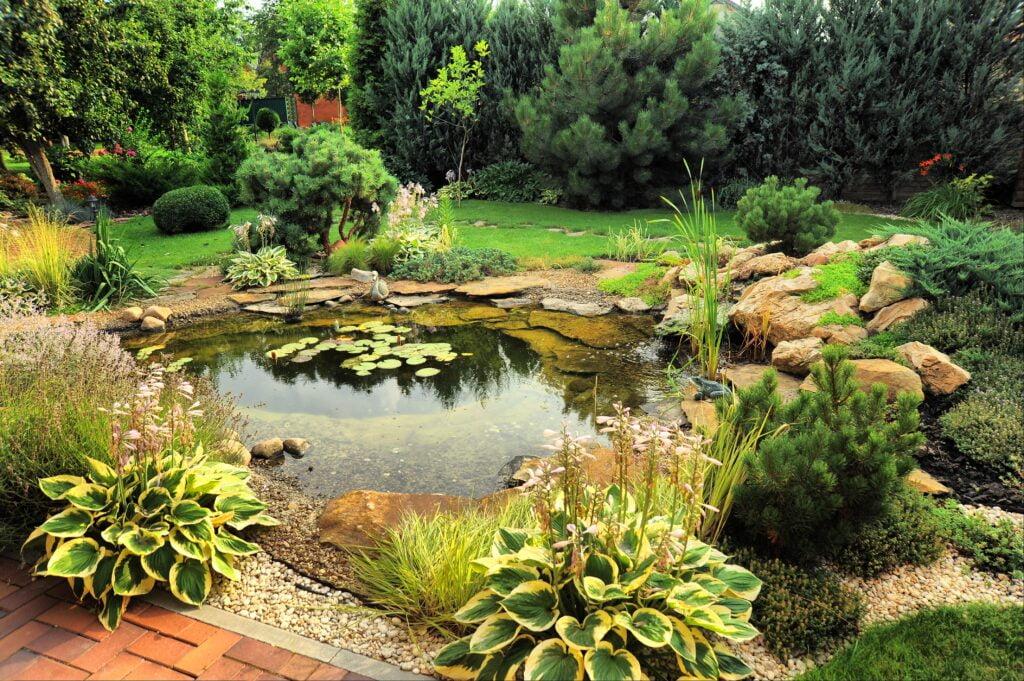 10. Natural Garden Pond