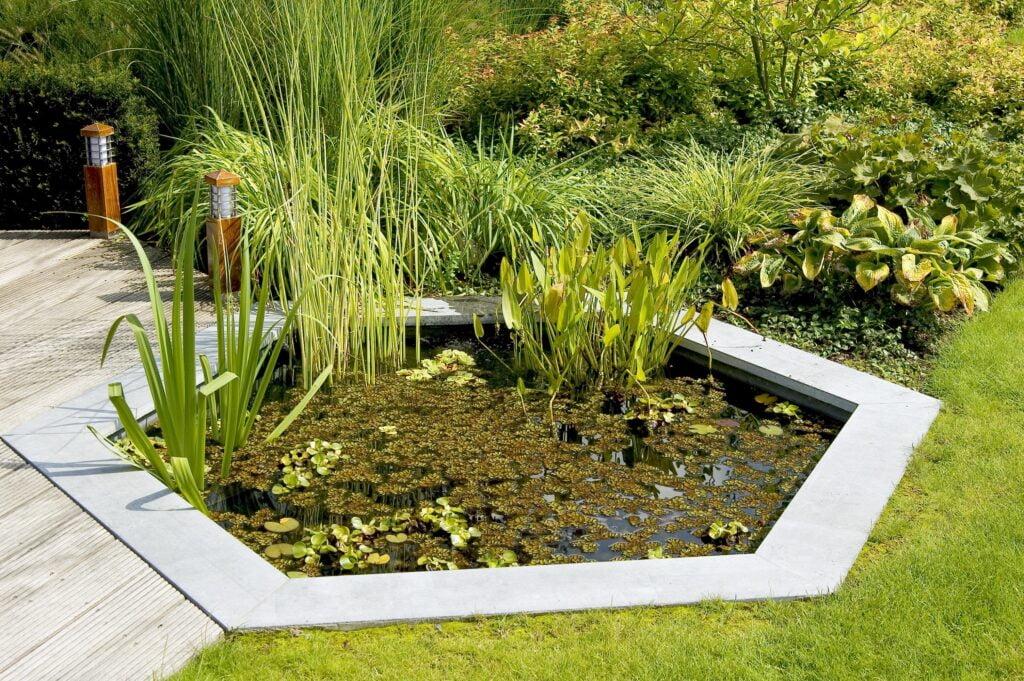 15. Garden Pond Landscaping