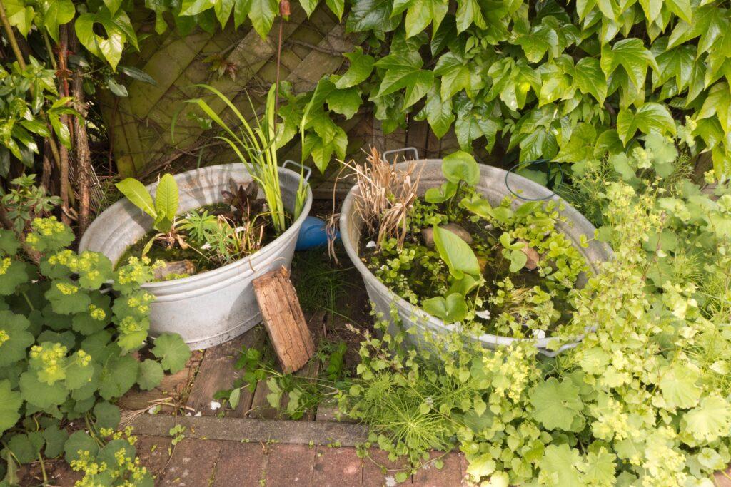 24. Garden Pond Plant Pot